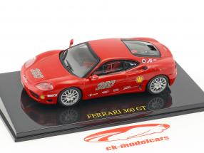 Ferrari 360 GT rosso con vetrina 1:43 Altaya
