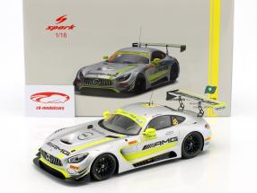 Mercedes-Benz AMG GT3 #48 Winner FIA GT World Cup Macau 2017 Edoardo Mortara 1:18 Spark