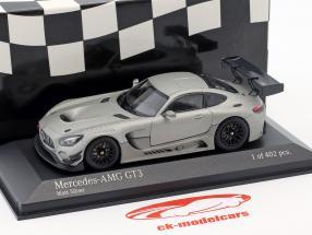 Mercedes-Benz AMG GT3 Plain Body Version year 2017 matt silver 1:43 Minichamps