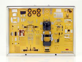 Model Art CMC Jaguar C-Type ano de construção 1952 componentes display 1:18 CMC