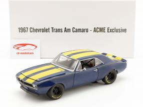 Chevrolet Trans Am Camaro 1967 blue / yellow 1:18 GMP
