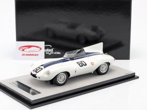 Jaguar D-Type #60 Sieger Watkins Glen GP 1955 Johnston 1:18 Tecnomodel