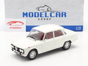 Alfa Romeo Giulia Nova Super year 1974 white 1:18 Model Car Group