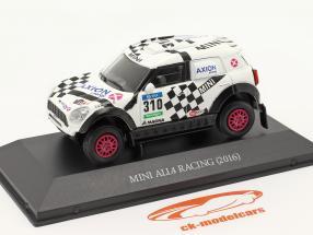 Mini All4 Racing #310 Rallye Dakar 2016 Terranova, Graue 1:43 Premium Collectibles