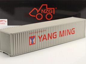 40 FT Récipient Yang Ming 1:18 NZG