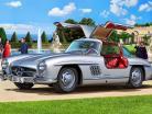 Mercedes-Benz 300 SL Trousse argent 1:12 Revell