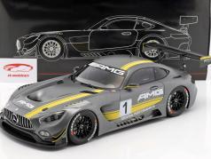 Mercedes-Benz AMG GT3 #1 Showcar Stars & Cars 2015 1:12 Premium ClassiXXs