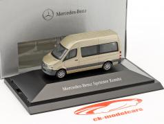 Mercedes-Benz Sprinter Kombi parel zilver metalen 1:87 Herpa
