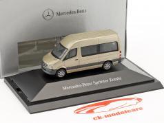 Mercedes-Benz Sprinter Kombi silver Pearl metálico 1:87 Herpa