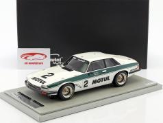 Jaguar XJS #2 ganador 500km Donington 1984 Percy, Nicholson 1:18 Tecnomodel
