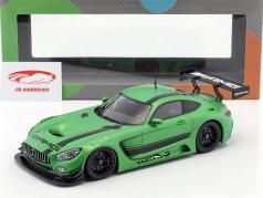 Mercedes-Benz AMG GT3 2015 grün metallic 1:18 Paragon Models