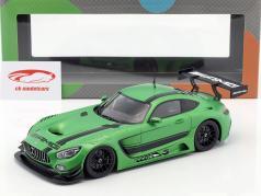 Mercedes-Benz AMG GT3 2015 vert métallique 1:18 Paragon Models