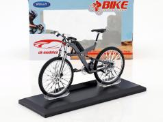 Bicycle BMW Q6.S XTR Grey 1:10 Welly