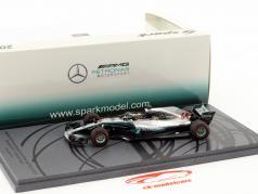 L. Hamilton Mercedes-AMG F1 W09 EQ Power  #44 campione del mondo Winner Abu Dhabi GP F1 2018 1:43 scintilla