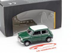 Mini Cooper mit Zusatzscheinwerfern grün / weiß 1:43 Cararama