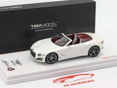 Bentley EXP 12 Speed 6E cabriolet année de construction 2015 blanc 1:43 TrueScale