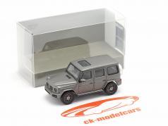 Mercedes-Benz G-Klasse (W463) Baujahr 2018 designo platin magno 1:87 Minichamps