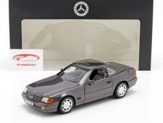 Mercedes-Benz 500 SL (R129) Coche de turismo 1989-1995 nacido metálico 1:18 Norev