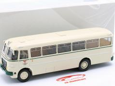 Ikarus 620 autobús VEB Kraftverkehr Eisenach 1961 beige 1:43 Premium ClassiXXs