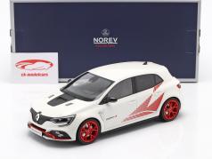 Renault Megane R.S. Trophy-R 建设年份 2019 白色 1:18 Norev