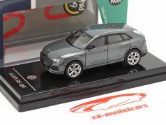 Audi RS Q8 Año de construcción 2018 daytona gris metálico 1:64 Paragon Models