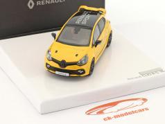 Renault Clio R.S. 16 bouwjaar 2016 geel / zwart 1:43 Norev