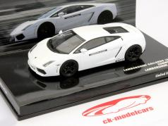 Lamborghini Gallardo LP 550-4 Lamborghini-Academy 2009 weiß 1:43 Minichamps