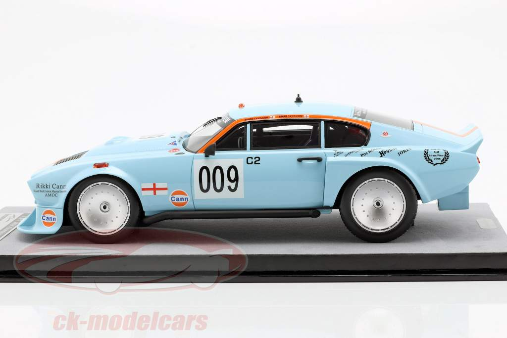 Aston Martin AM V8 #009 AMOC kampioen 2008 Rikki Cann 1:18 Tecnomodel