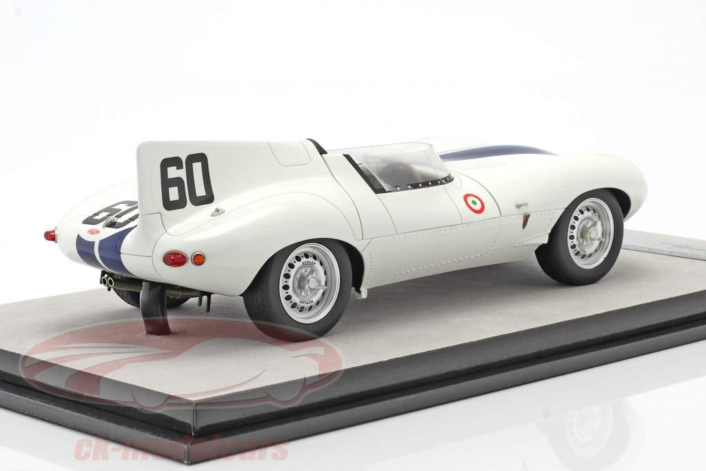 Jaguar D-Type #60 gagnant Watkins Glen GP 1955 Johnston 1:18 Tecnomodel