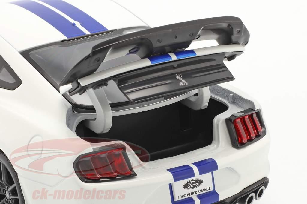 Ford Mustang Shelby GT500 Anno di costruzione 2020 bianca con blu strisce 1:18 Maisto