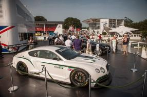 Bentley GT3 FoS Goodwood 2013