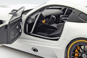 Modellautos Mercedes-AMG GT3 1:18