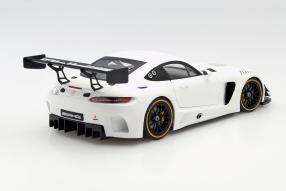 model cars Mercedes-AMG GT3 1:18