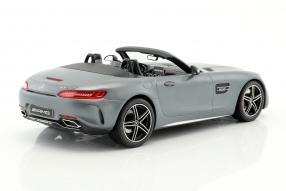 Modellautos Mercedes-AMG GT C 1:18