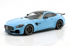 Mercedes-AMG GT R 2017 1:18