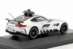 diecast miniatures Mercedes-AMG GT Safety Car Formel 1 2018 1:43