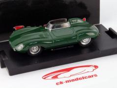 Jaguar D-Type Prototype 1954 1:43 Brumm