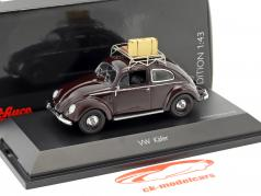Volkswagen VW Brezelkäfer summer 1951 dark brown 1:43 Schuco