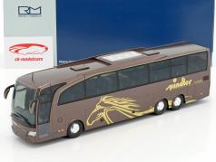 Mercedes-Benz Travego M Spindler Wehringen brown metallic / gold 1:43 Rietze