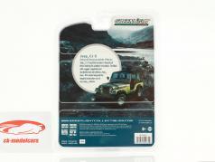 Jeep CJ-5 Silver Anniversary Edition anno di costruzione 1979 grigio / nero 1:64 Greenlight