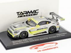 Mercedes-Benz AMG GT3 #48 Winner FIA GT World Cup Macau 2017 Edoardo Mortara 1:43 Minichamps