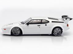 BMW M1 Procar year 1979 white 1:12 Minichamps