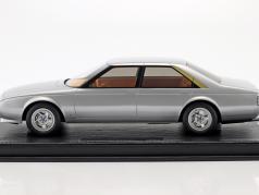 Pinin by Pininfarina year 1980 silver 1:18 BBR